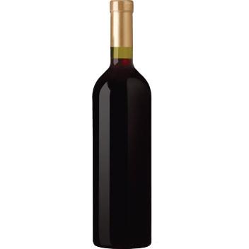 Bottiglia Rosso MioVin - Sito Web Ecommerce per Cantine KAUKY.COM Web Agency Pavia