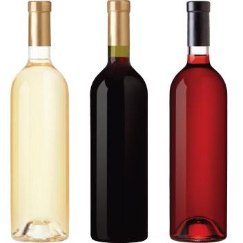 Bottiglie vino MioVin - Sito Web Ecommerce per Cantine KAUKY.COM Web Agency Pavia