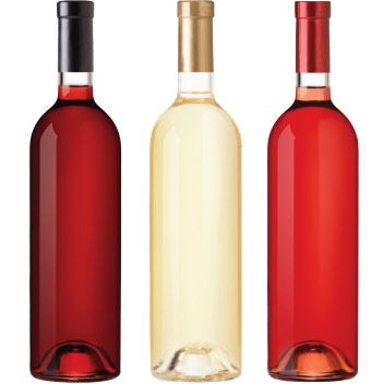 Bottiglie MioVin - Sito Web Ecommerce per Cantine KAUKY.COM Web Agency Pavia